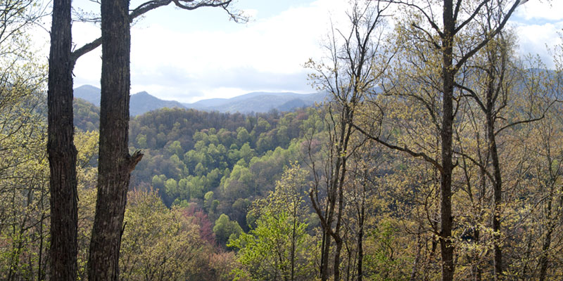 view from top of Nantahala Mountain
