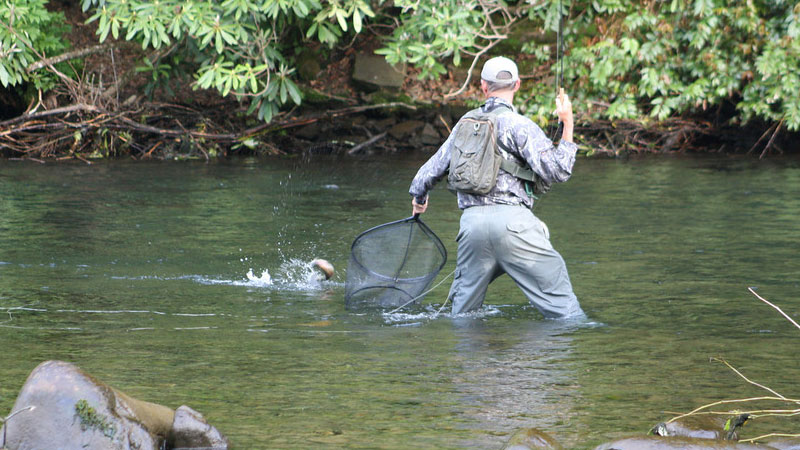 Nc Trout Fishing Upper Nantahala River Gorge Fishing
