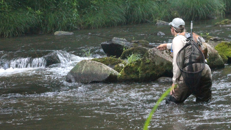 Nc trout fishing upper nantahala river gorge fishing for Nc wildlife fishing license
